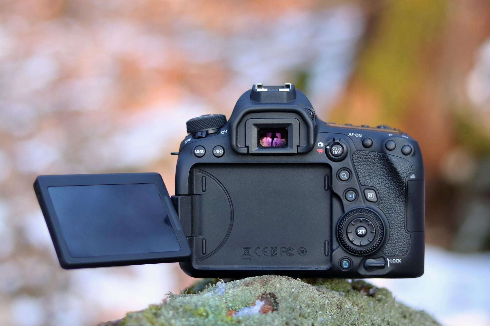 Canon Eos 6D mark II – Stvorený pre wildlife   cc21607ba3c