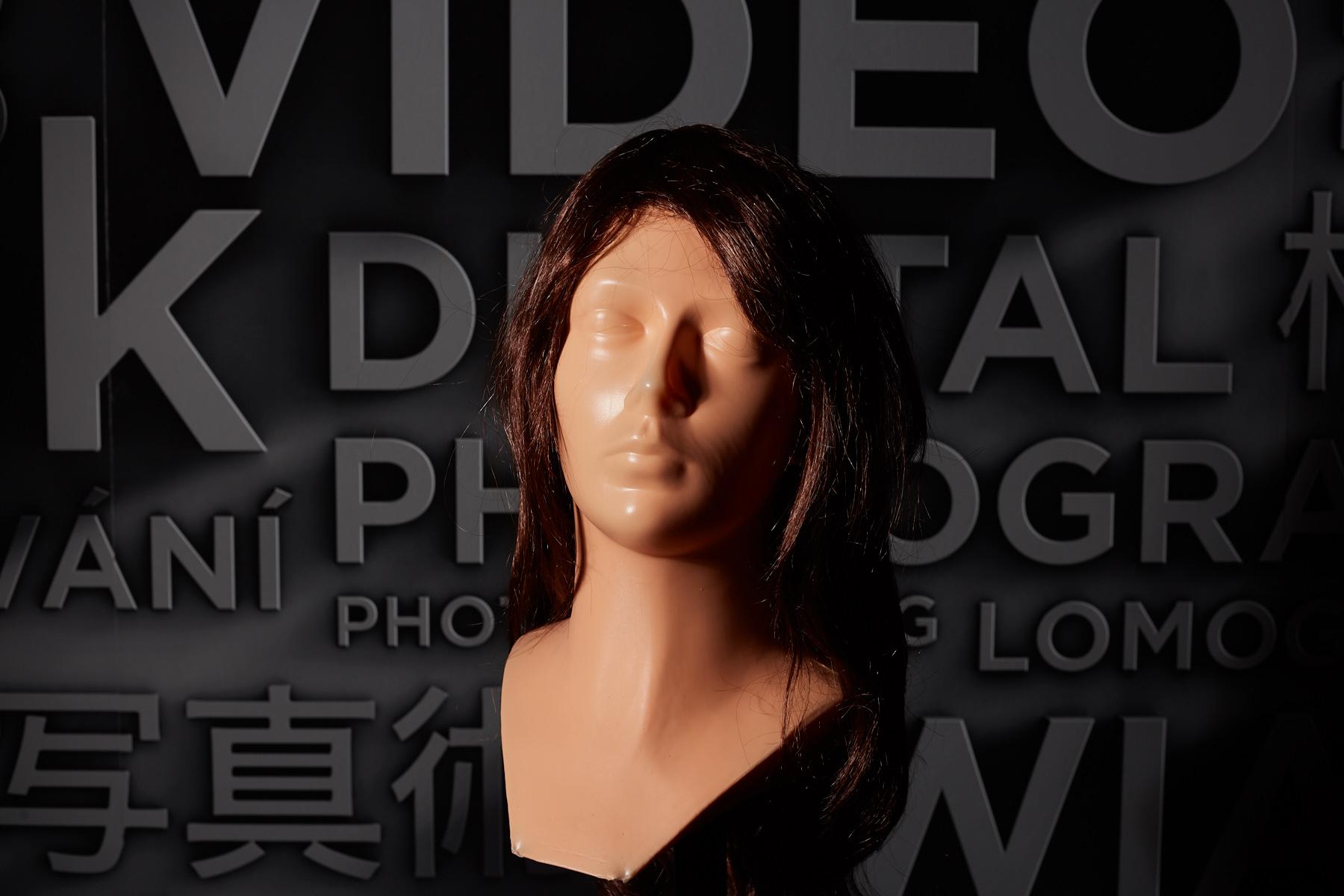 Sania videá